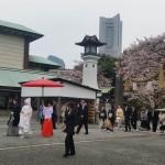 伊勢山皇大神宮での結婚奉告祭!