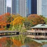 東京で穴場のロケーション撮影  はいかが。